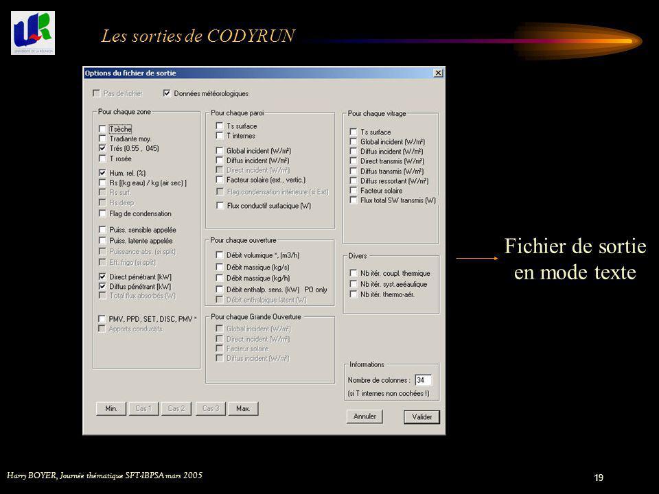 Fichier de sortie en mode texte Les sorties de CODYRUN