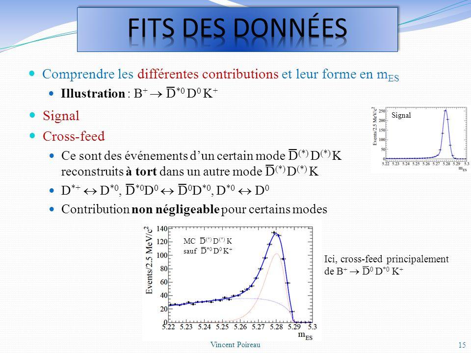 FITS DES DONNéES Comprendre les différentes contributions et leur forme en mES. Illustration : B+  D*0 D0 K+