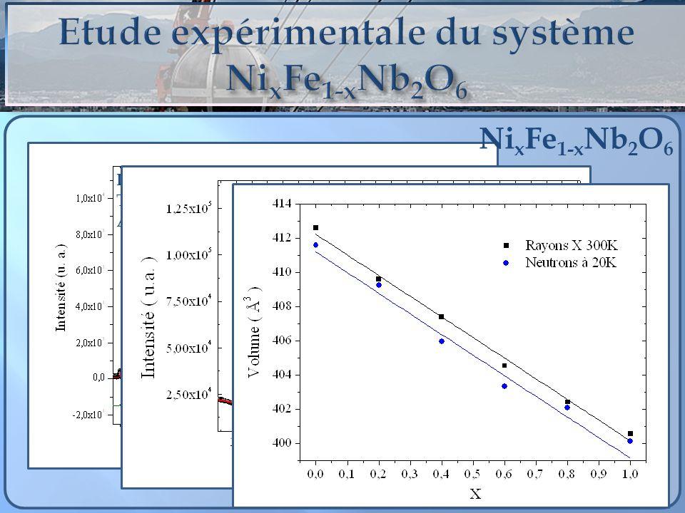 Etude expérimentale du système NixFe1-xNb2O6