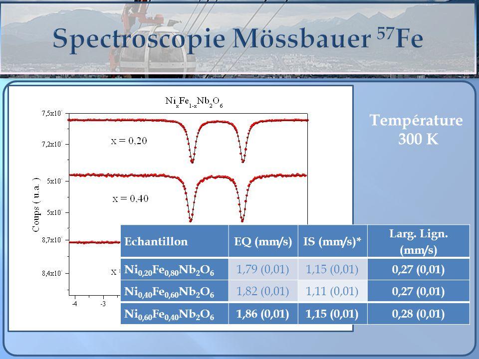 Spectroscopie Mössbauer 57Fe