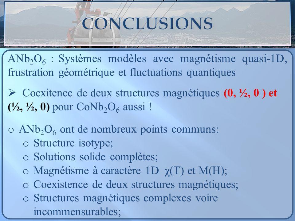 ANb2O6 : Systèmes modèles avec magnétisme quasi-1D, frustration géométrique et fluctuations quantiques