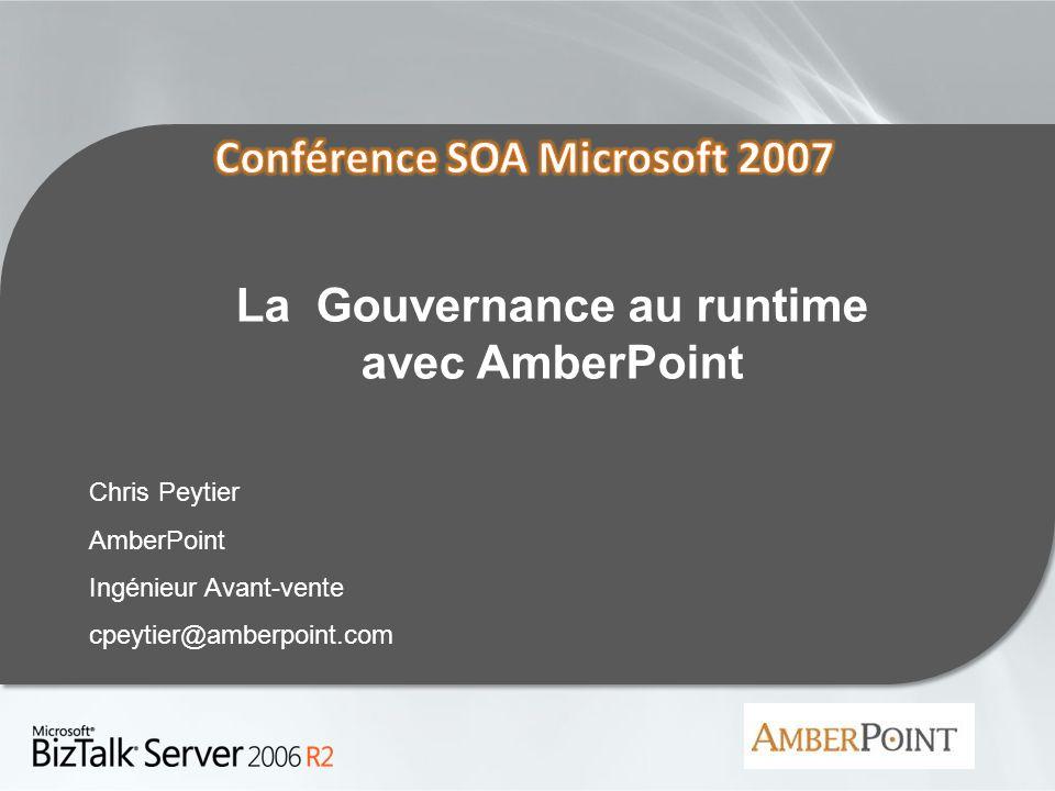 La Gouvernance au runtime avec AmberPoint