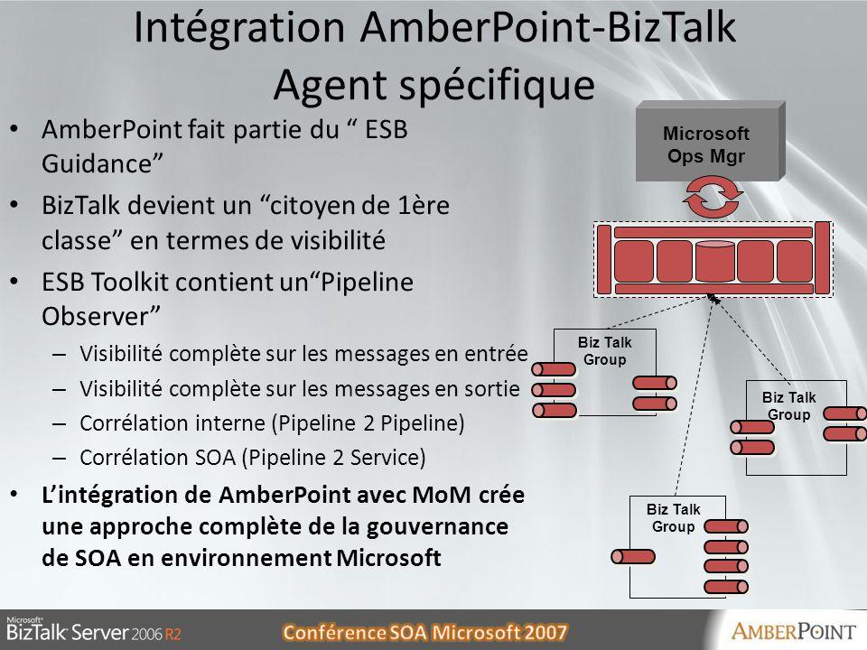 Intégration AmberPoint-BizTalk Agent spécifique