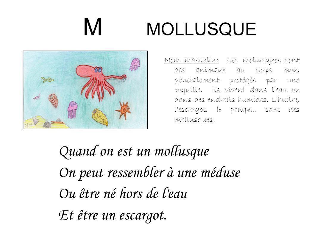 M MOLLUSQUE Quand on est un mollusque On peut ressembler à une méduse