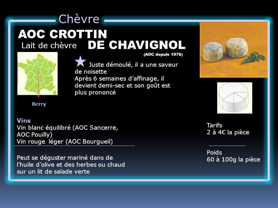 Chèvre AOC CROTTIN DE CHAVIGNOL Lait de chèvre