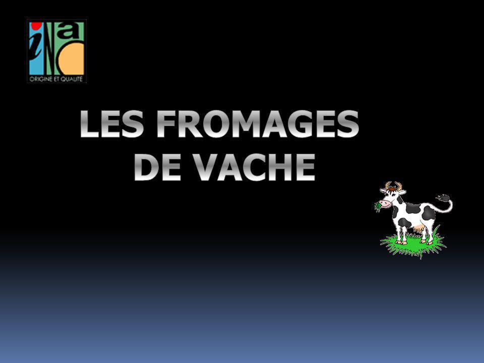 LES FROMAGES DE VACHE