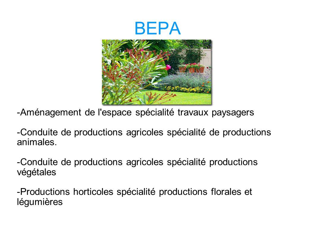BEPA -Aménagement de l espace spécialité travaux paysagers