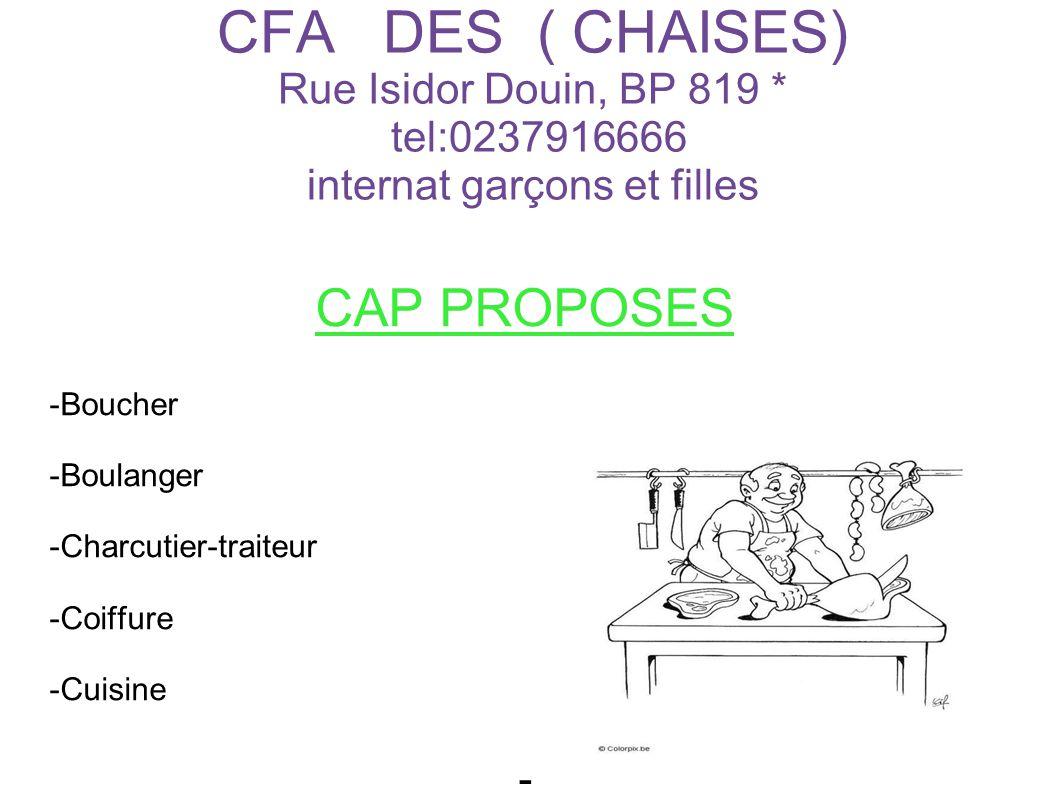 CFA DES ( CHAISES) Rue Isidor Douin, BP 819