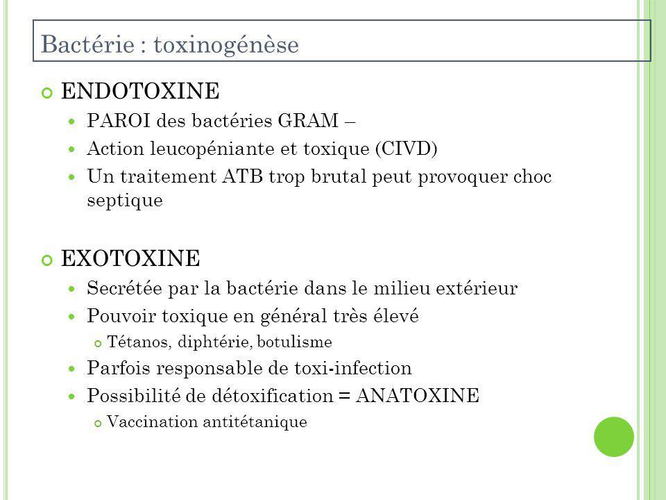 Bactérie : toxinogénèse