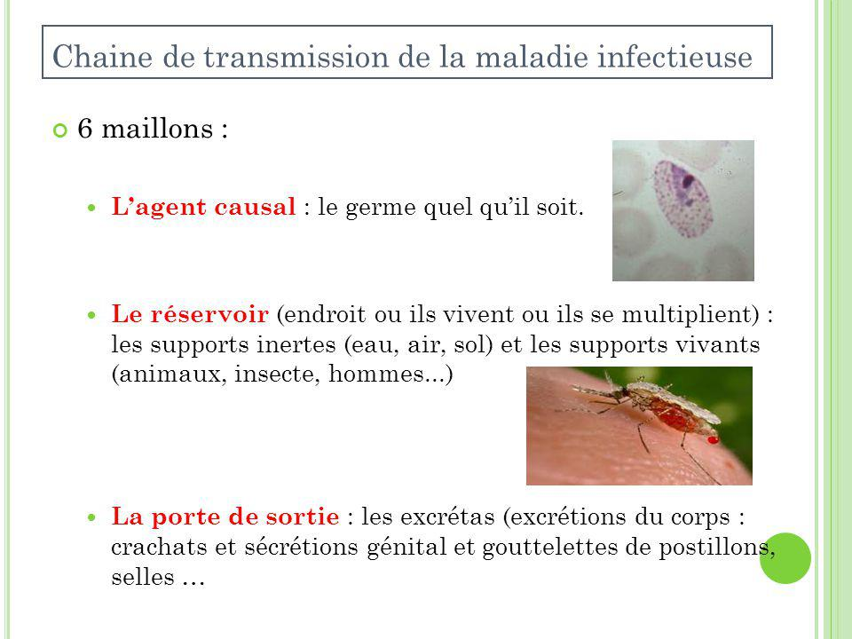 Chaine de transmission de la maladie infectieuse