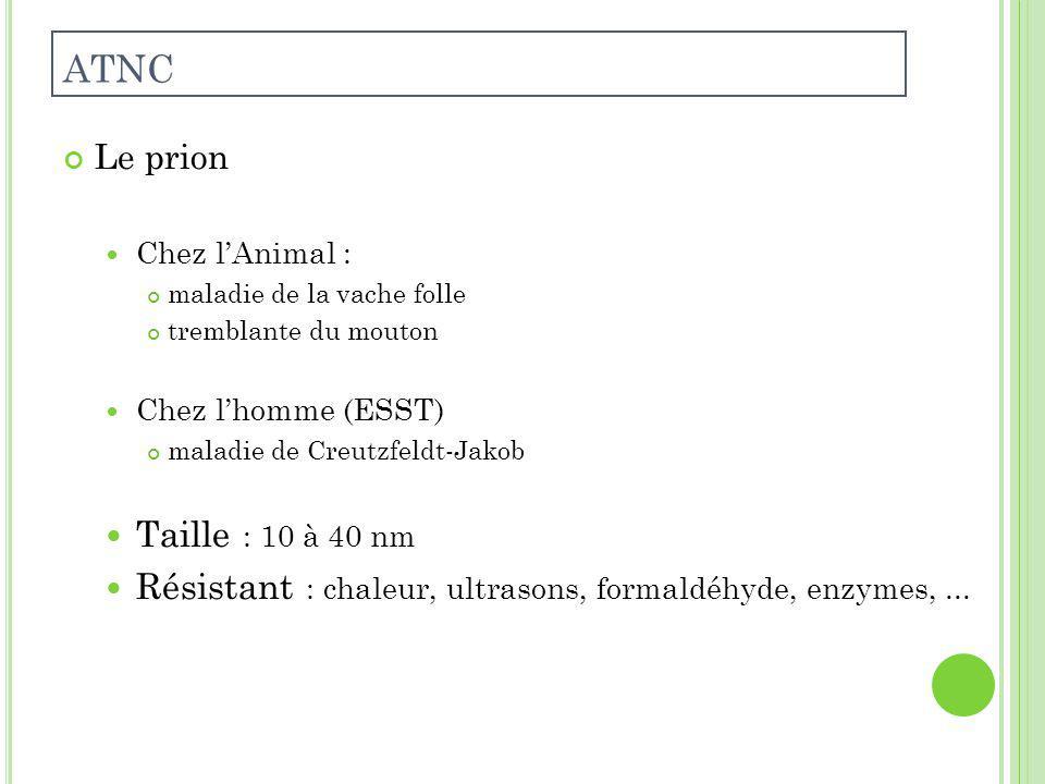 ATNC Le prion. Chez l'Animal : maladie de la vache folle. tremblante du mouton. Chez l'homme (ESST)