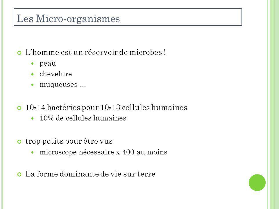 Les Micro-organismes L'homme est un réservoir de microbes !