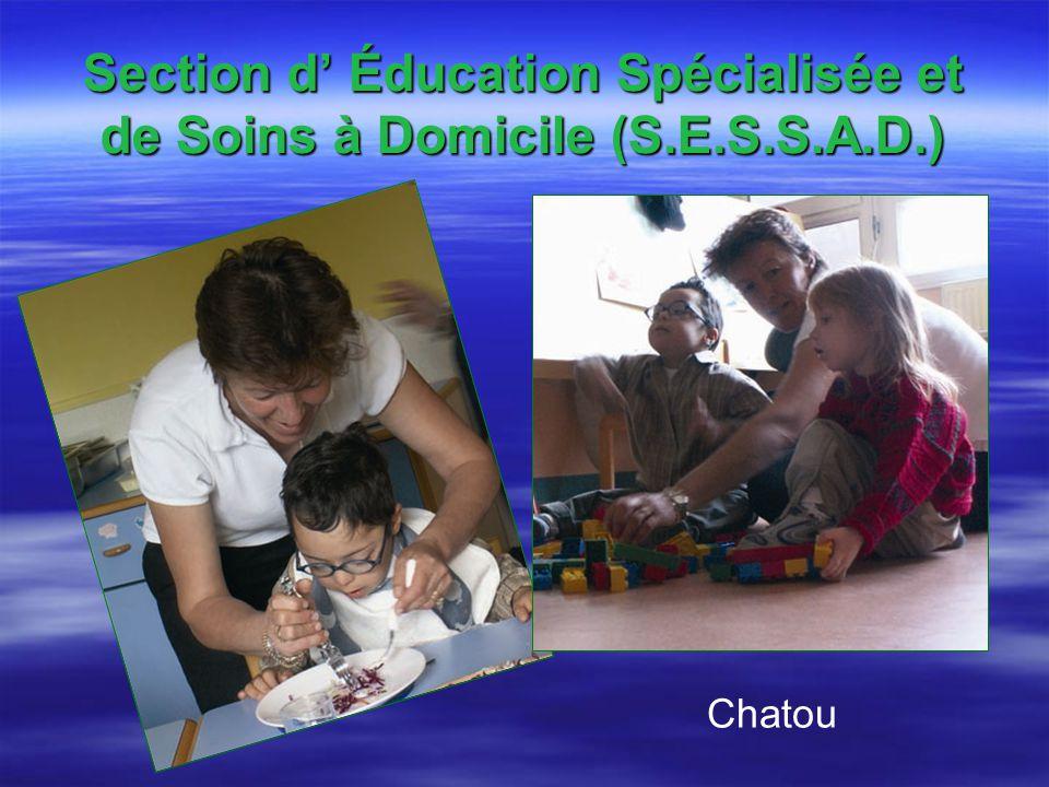 Section d' Éducation Spécialisée et de Soins à Domicile (S.E.S.S.A.D.)