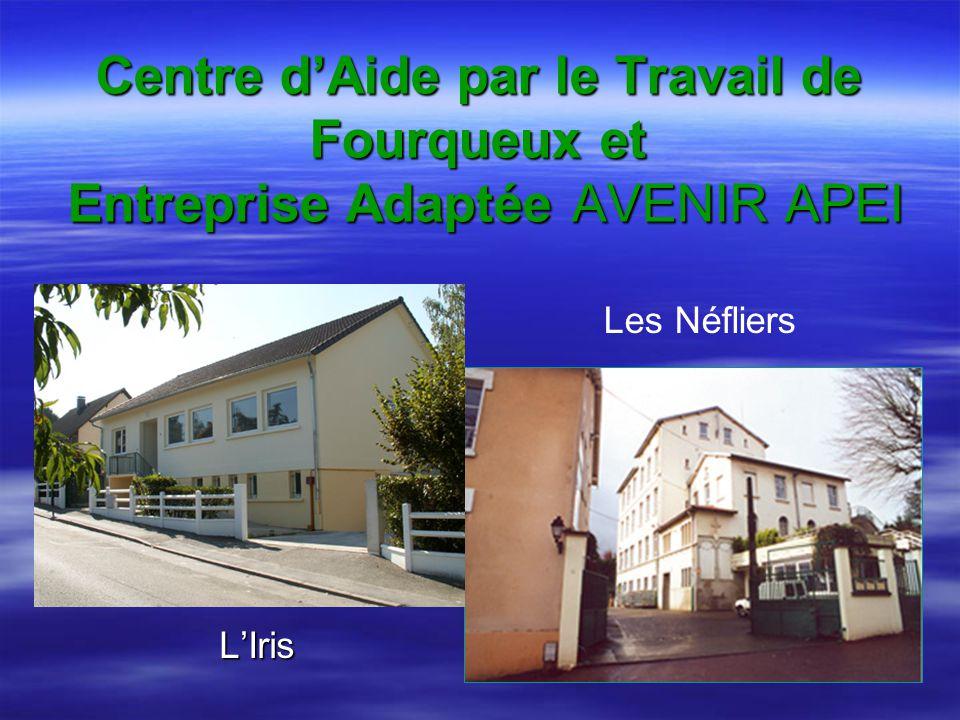 Centre d'Aide par le Travail de Fourqueux et Entreprise Adaptée AVENIR APEI