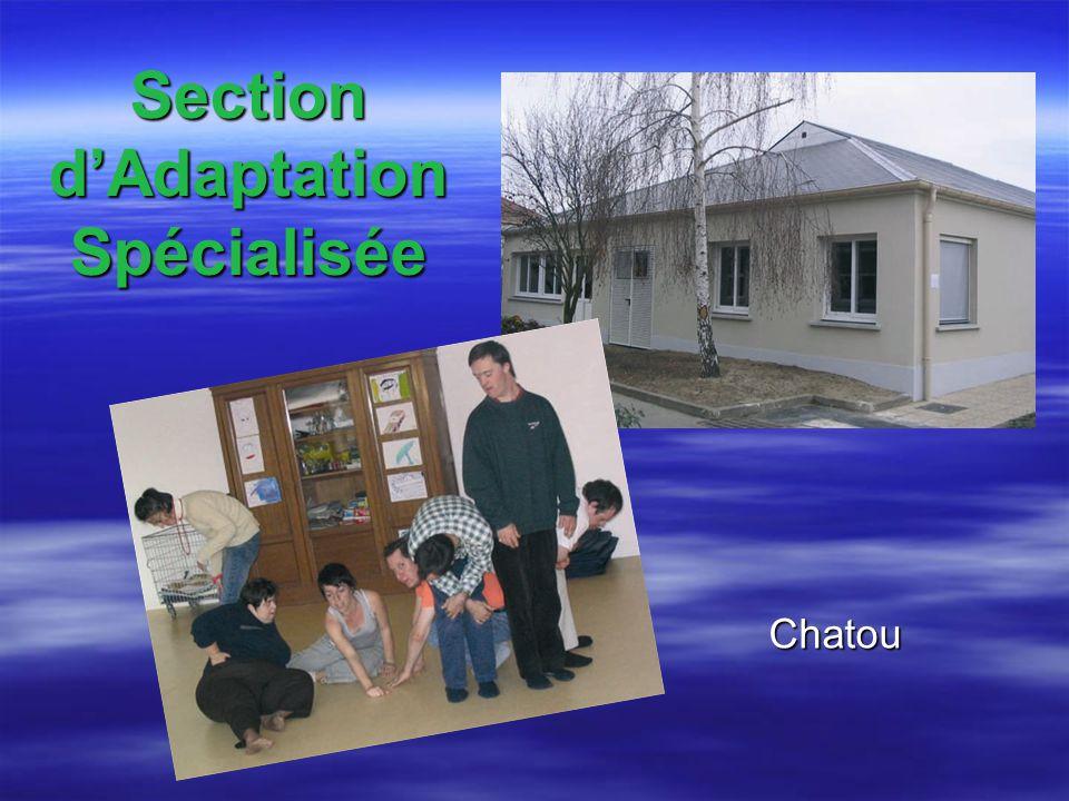 Section d'Adaptation Spécialisée
