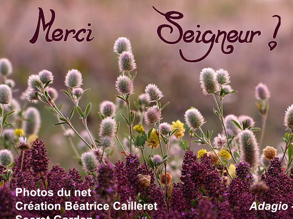 Photos du net Création Béatrice Cailleret Adagio - Secret Garden
