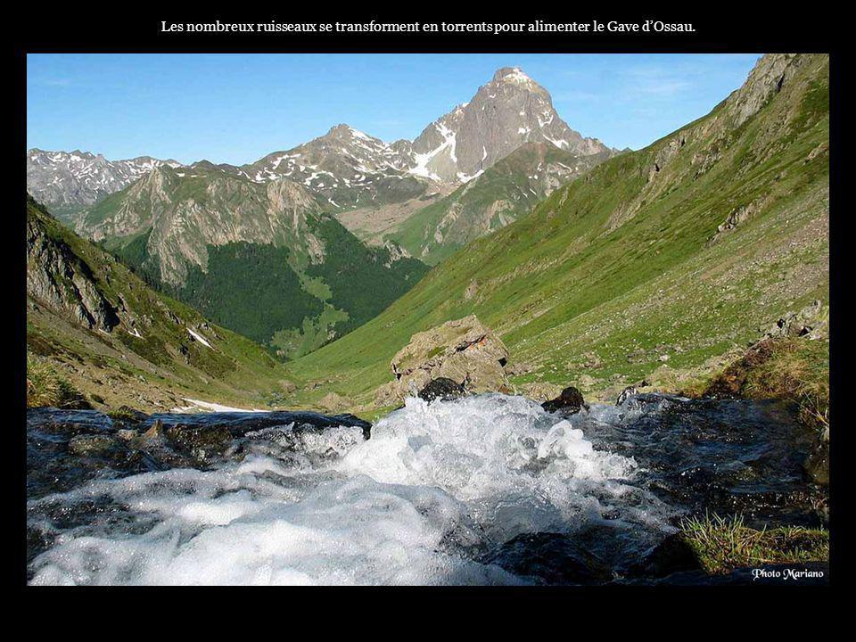 Les nombreux ruisseaux se transforment en torrents pour alimenter le Gave d'Ossau.