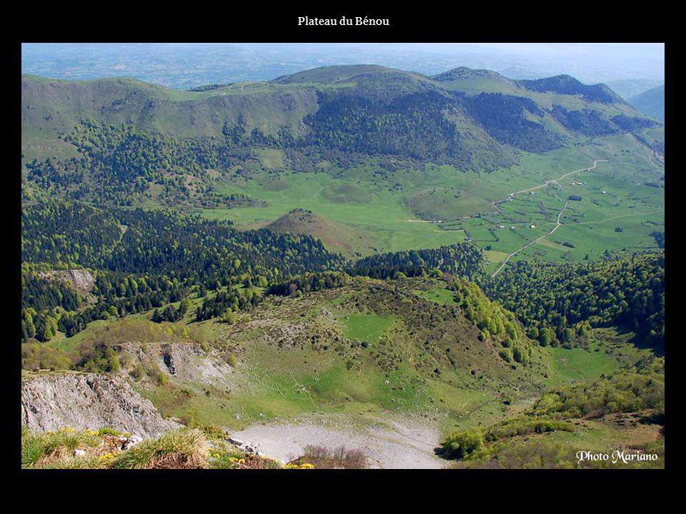 Plateau du Bénou . . . .