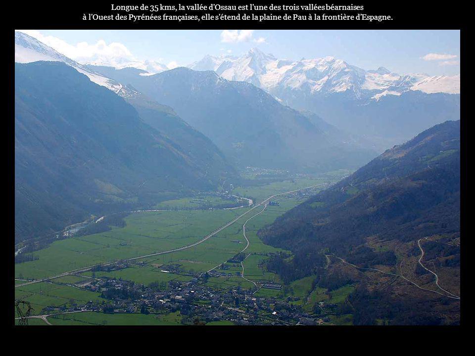 Longue de 35 kms, la vallée d Ossau est l une des trois vallées béarnaises