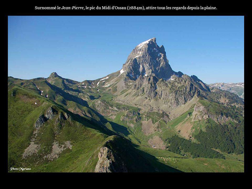 Surnommé le Jean-Pierre, le pic du Midi d Ossau (2884m), attire tous les regards depuis la plaine.