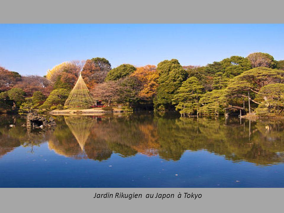 Jardin Rikugien au Japon à Tokyo