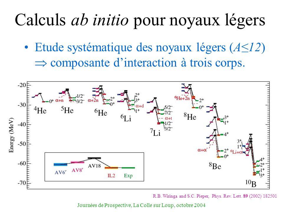 Calculs ab initio pour noyaux légers