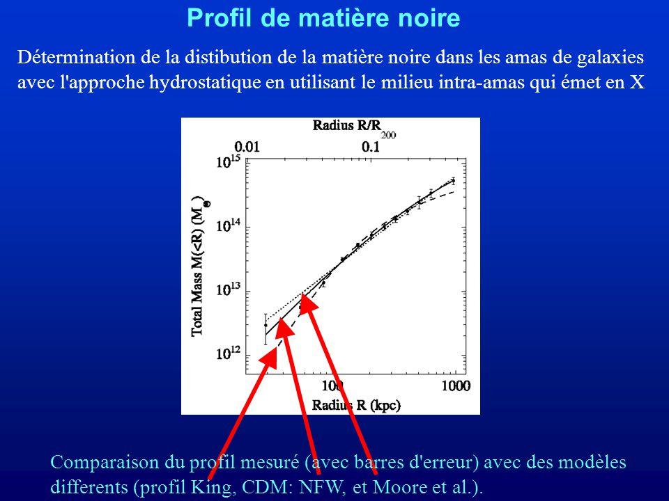 Profil de matière noire