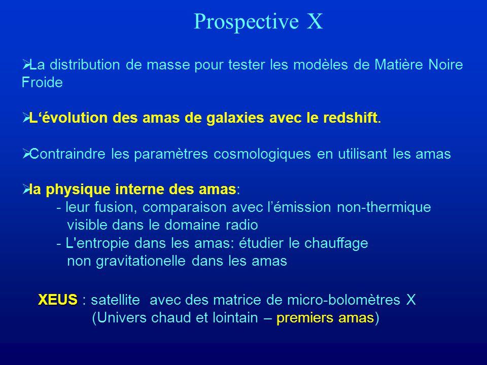 Prospective X La distribution de masse pour tester les modèles de Matière Noire Froide. L'évolution des amas de galaxies avec le redshift.