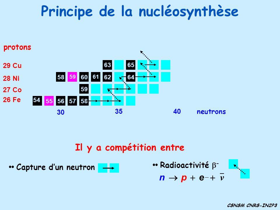 Principe de la nucléosynthèse