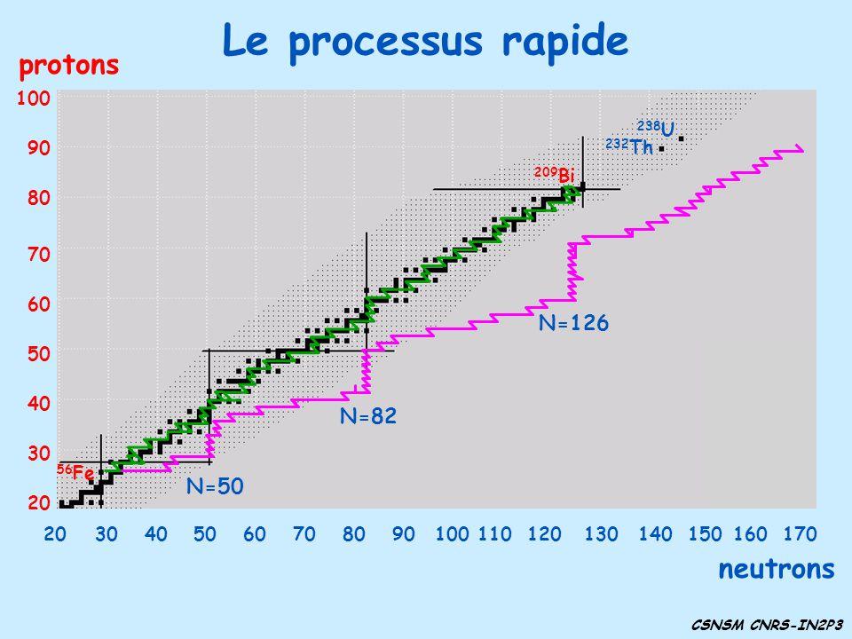 Le processus rapide protons neutrons N=126 N=82 N=50 30 40 50 60 70 80