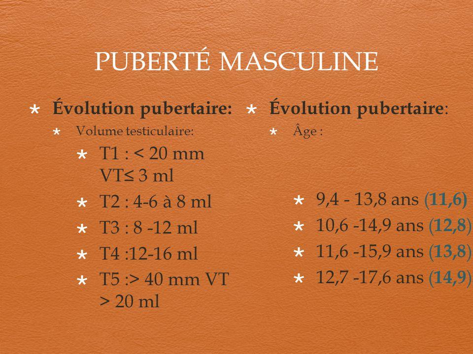 PUBERTÉ MASCULINE Évolution pubertaire: T1 : < 20 mm VT≤ 3 ml