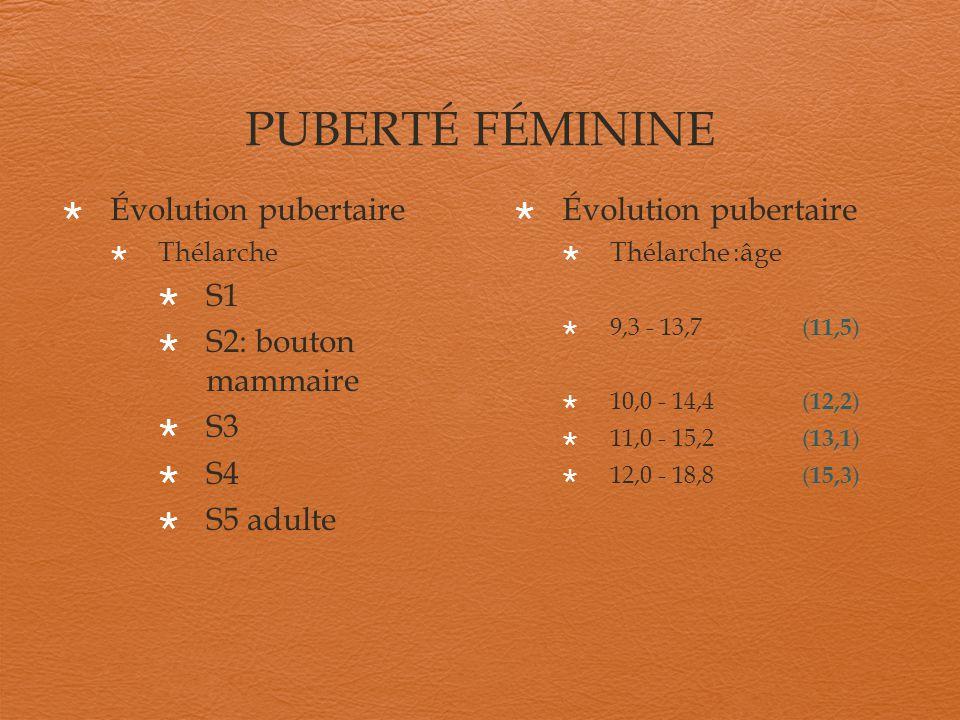PUBERTÉ FÉMININE Évolution pubertaire S1 S2: bouton mammaire S3 S4