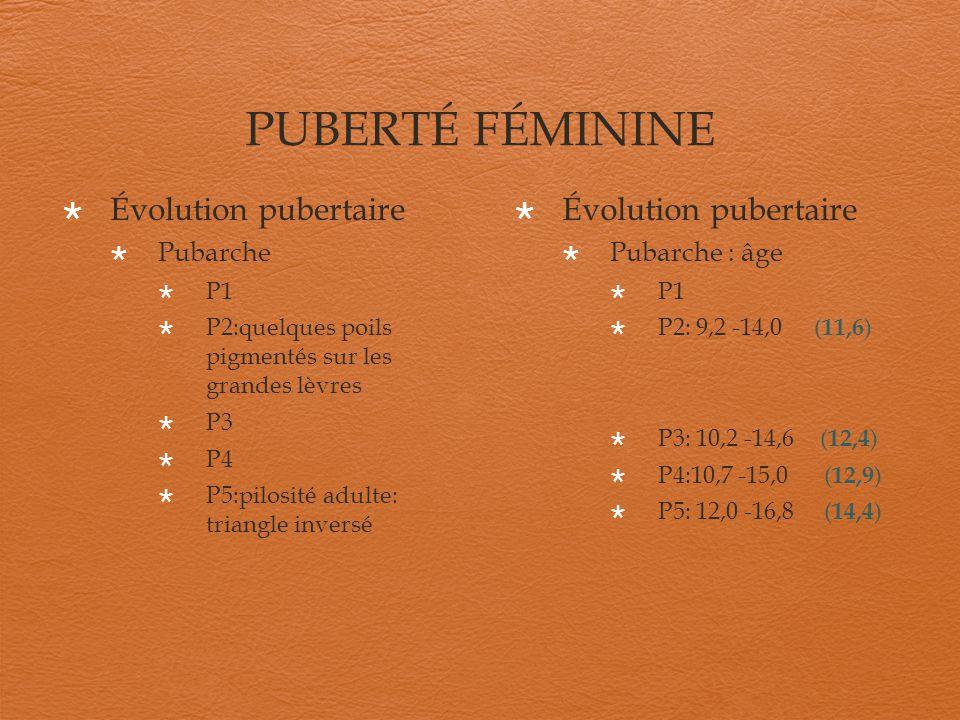 PUBERTÉ FÉMININE Évolution pubertaire Évolution pubertaire Pubarche
