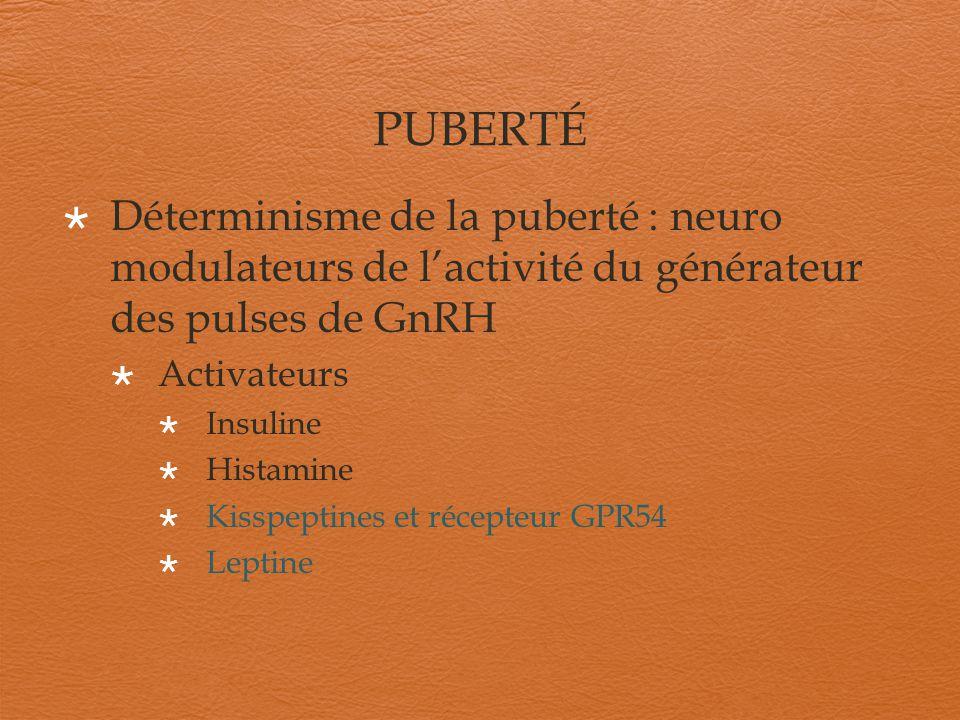 PUBERTÉ Déterminisme de la puberté : neuro modulateurs de l'activité du générateur des pulses de GnRH.