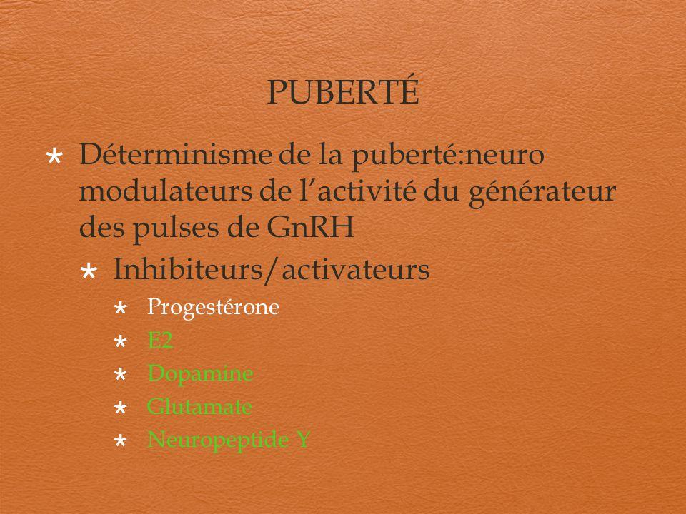 PUBERTÉ Déterminisme de la puberté:neuro modulateurs de l'activité du générateur des pulses de GnRH.