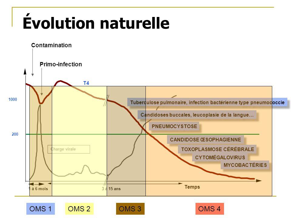 Évolution naturelle OMS 1 OMS 2 OMS 3 OMS 4 Contamination