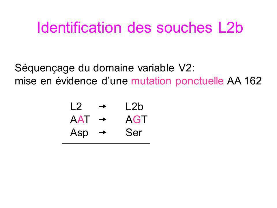 Identification des souches L2b