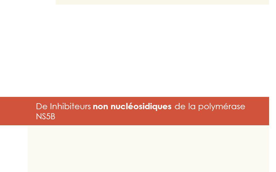 De Inhibiteurs non nucléosidiques de la polymérase NS5B