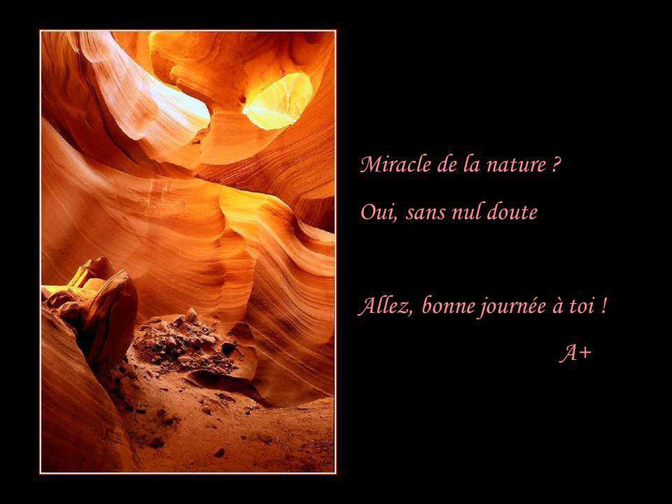 Miracle de la nature Oui, sans nul doute Allez, bonne journée à toi ! A+
