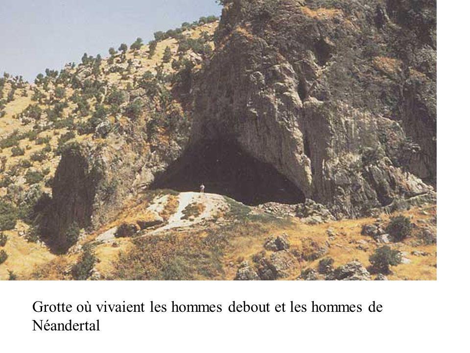 Grotte où vivaient les hommes debout et les hommes de Néandertal