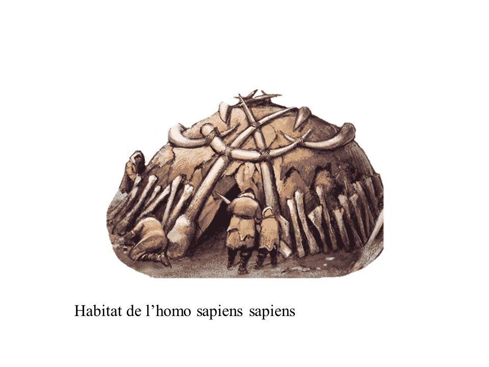 Habitat de l'homo sapiens sapiens