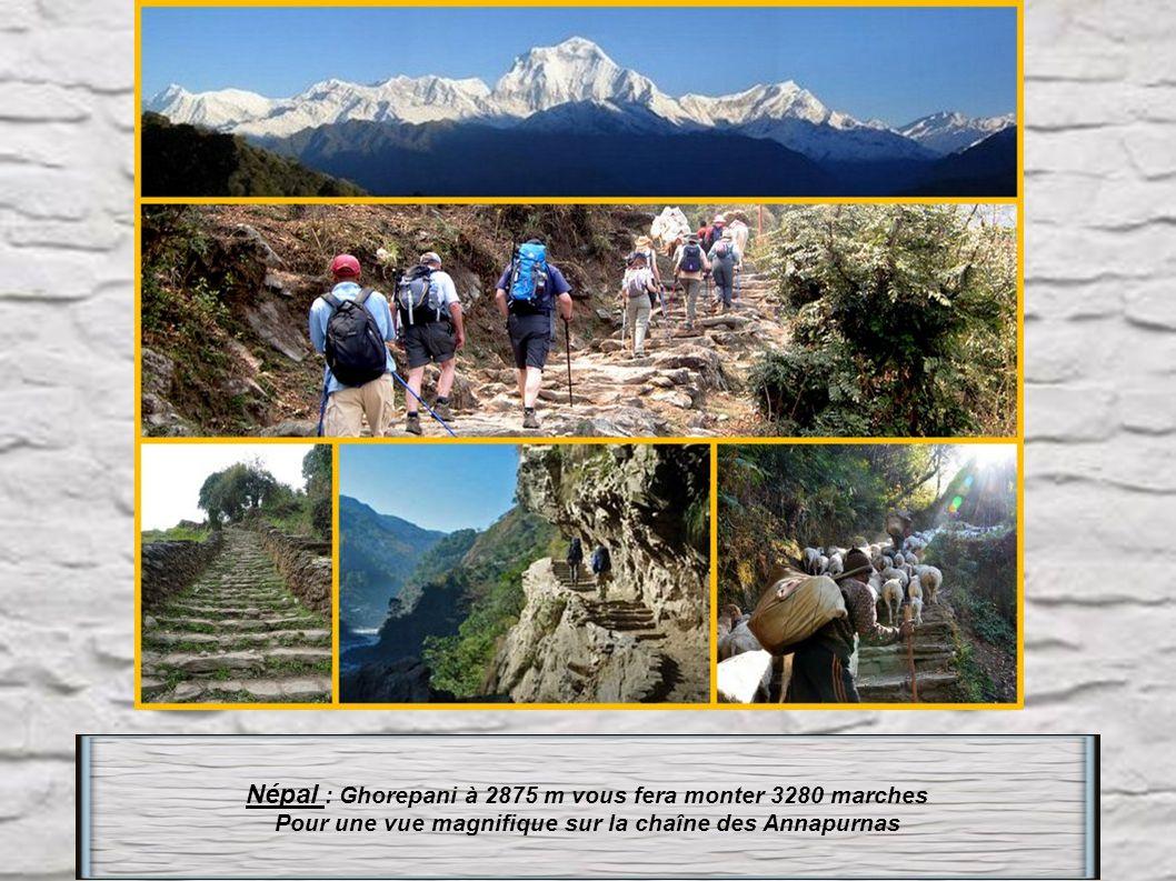 Népal : Ghorepani à 2875 m vous fera monter 3280 marches
