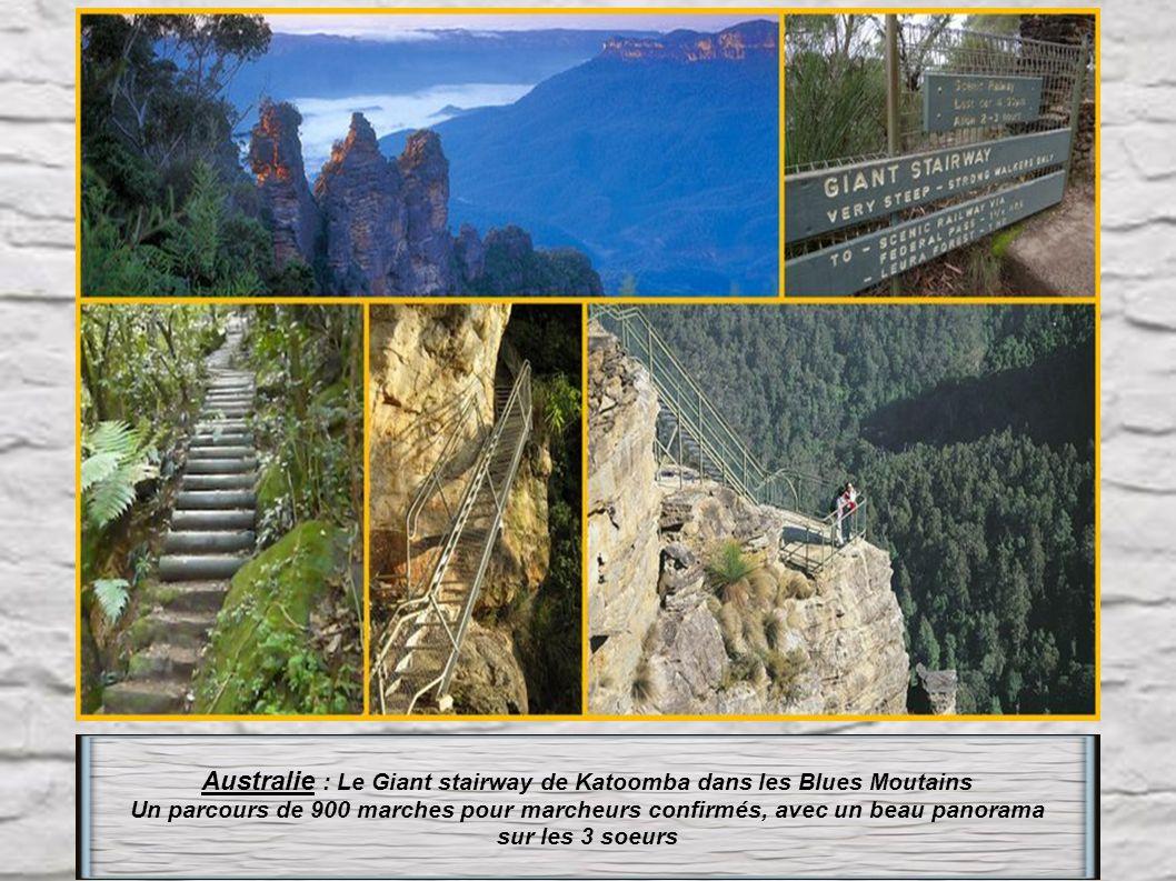Australie : Le Giant stairway de Katoomba dans les Blues Moutains