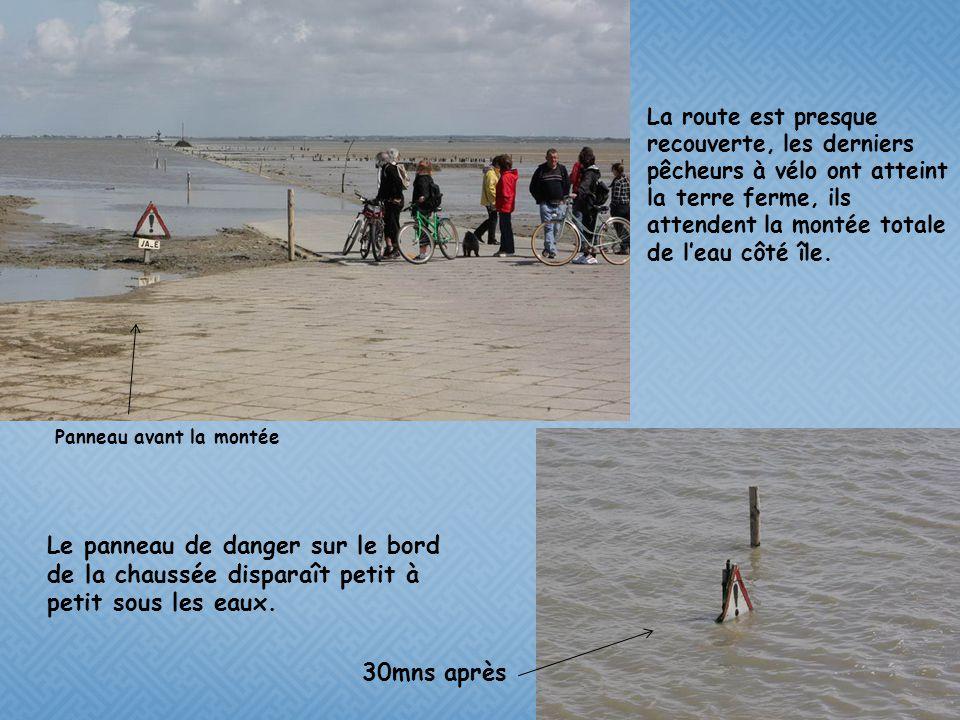 La route est presque recouverte, les derniers pêcheurs à vélo ont atteint la terre ferme, ils attendent la montée totale de l'eau côté île.