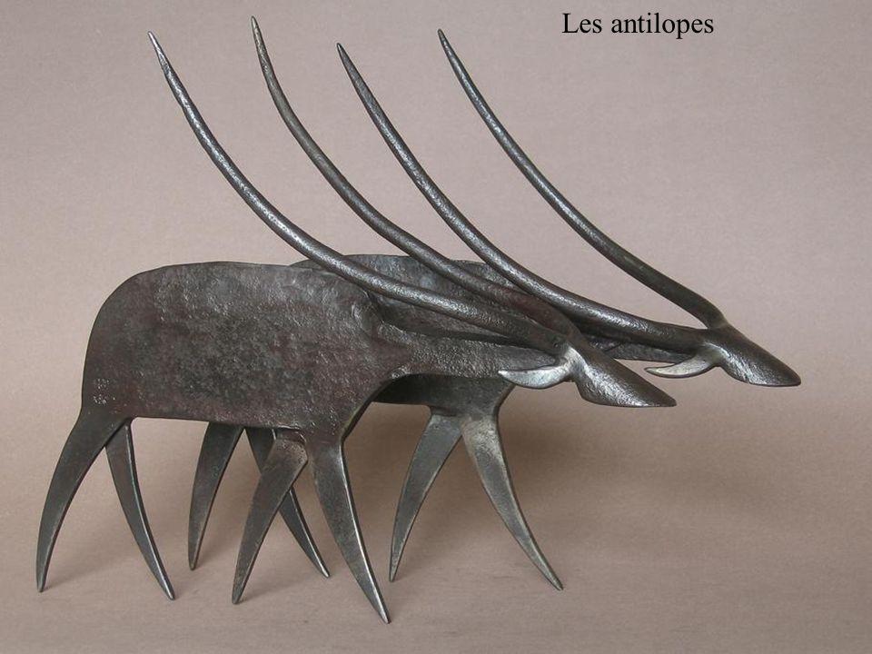 Les antilopes