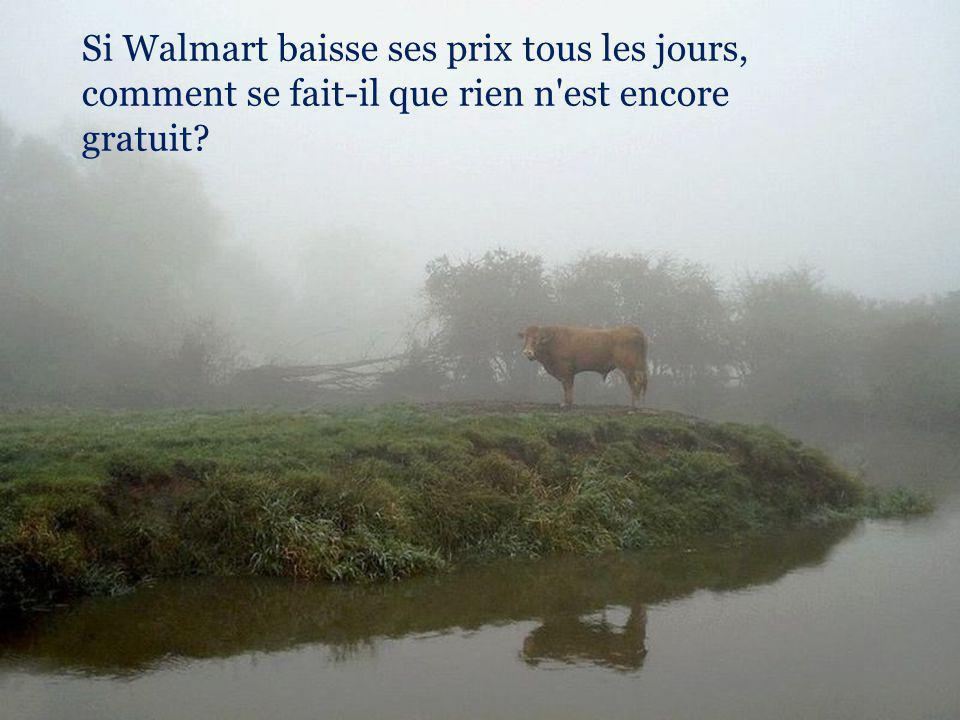 Si Walmart baisse ses prix tous les jours, comment se fait-il que rien n est encore gratuit