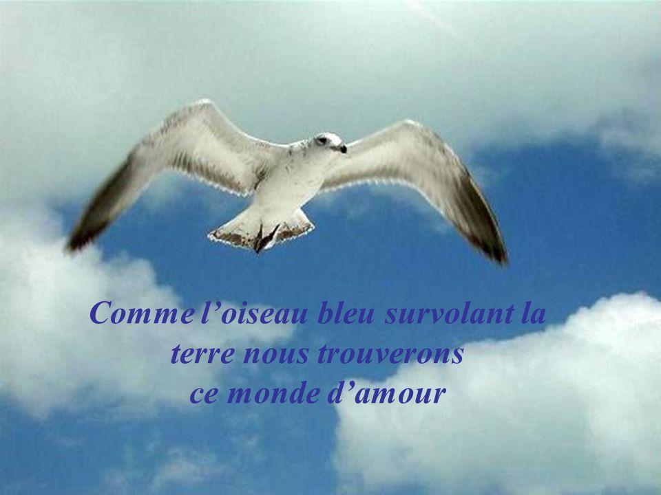 Comme l'oiseau bleu survolant la terre nous trouverons ce monde d'amour