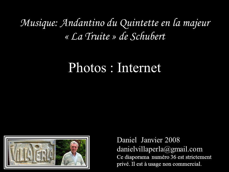 Musique: Andantino du Quintette en la majeur « La Truite » de Schubert