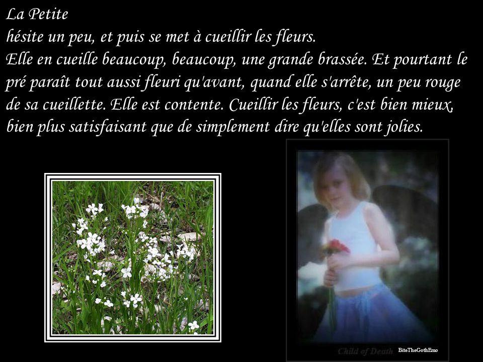 La Petite hésite un peu, et puis se met à cueillir les fleurs
