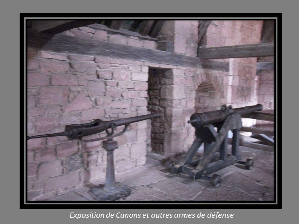 Exposition de Canons et autres armes de défense